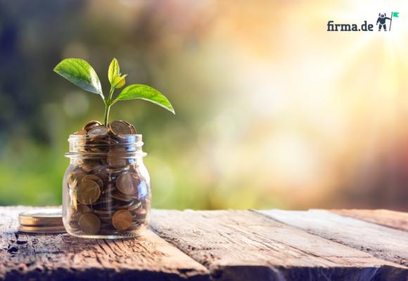 GmbH-Gründung: Tipps zum Stammkapital von Gründungsexperte Christian Manthey